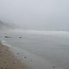 Foggy Shoreline - Northern California Coast 1