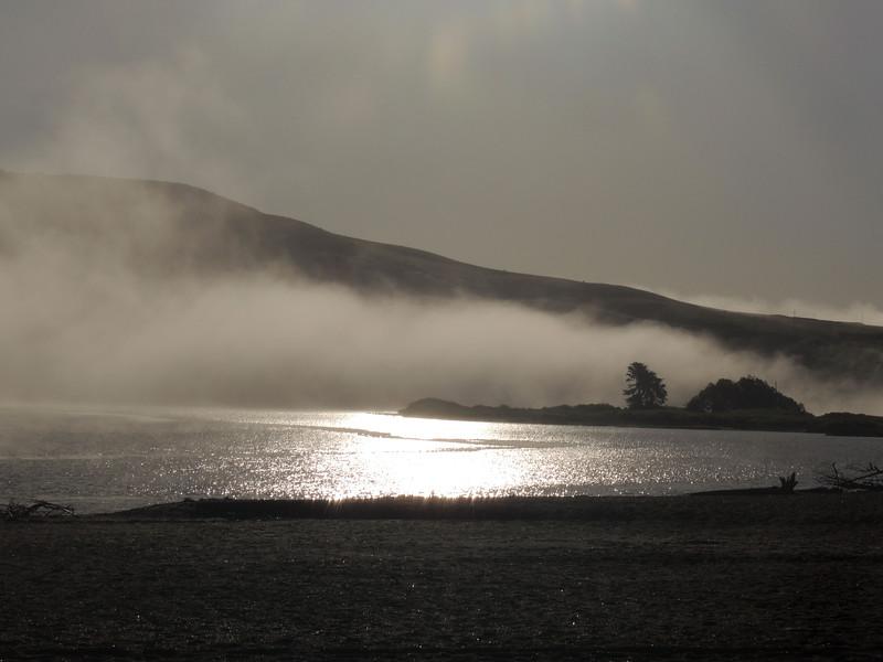 Foggy Morning - Goat Rock Beach 19