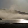 Foggy Morning - Goat Rock Beach 20