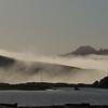 Rolling Fog - Goat Rock Beach 21