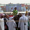 Dubai World Cup Horse Race Meeting 29th March 2014 at Meydan race track