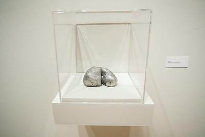 Amoebas by MIchael Pfleghaar