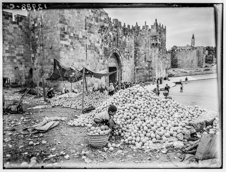 Orange piles at Damascus Gate.  1944