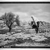 90.  Bethlehem from the south. 1945