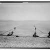 93.  Galilee Sea.  Drawing in drag net. 1940–1946