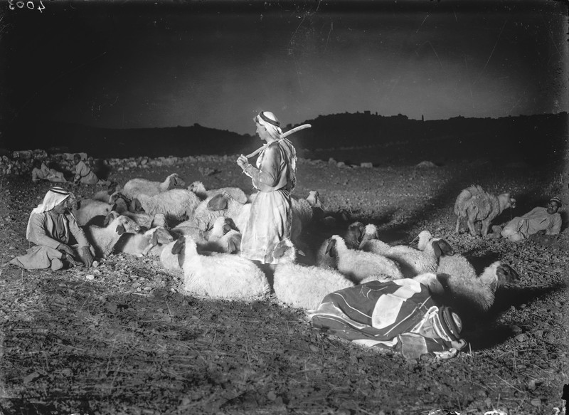 Shepherds watching their flocks with Bethlehem in distance. 1920-1933