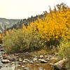 Near North Lake, Bishop Creek Canyon