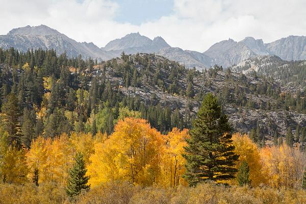 Sierra Colors, Bishop Creek Canyon #0850