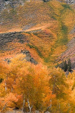 Bishop Canyon Fall, Road to North Lake