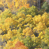 Lundy Canyon Colors