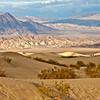 Mesquite Dunes #0340