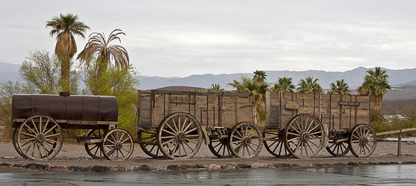 Rainy Day, Death Valley #0702   At Furnace Creek Ranch.