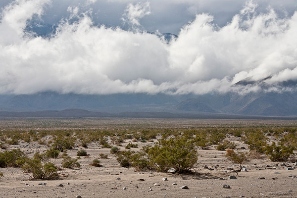 Rainy Day, Panamint Valley #0867  Low clouds lifting.