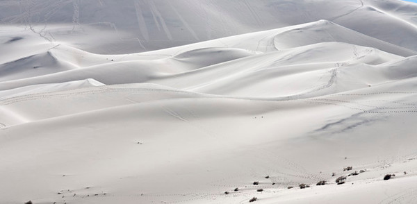 Eureka Dunes #9924