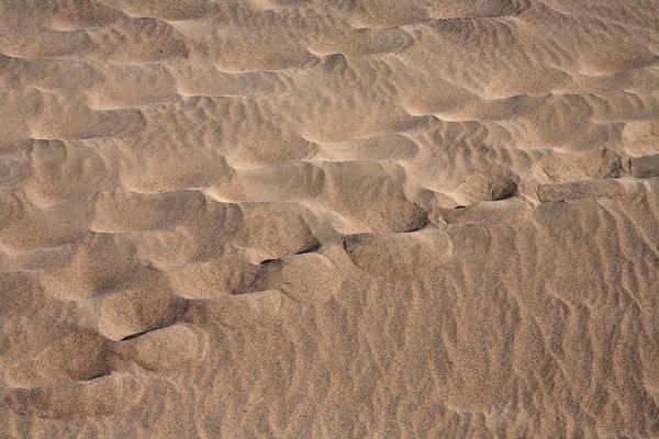 Mesquite Dunes #0338  Footprint patterns.