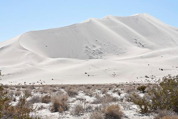 Eureka Dune #0006