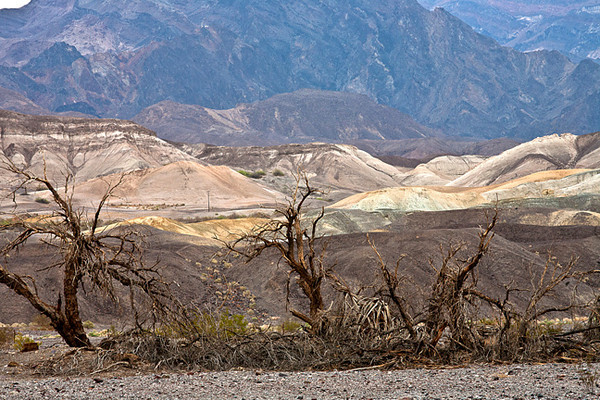 Rainy Day, Death Valley #0697  Near Furnace Creek.