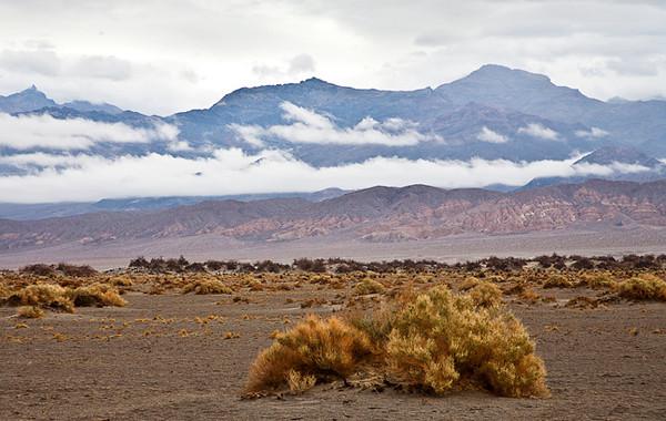 Rainy Day, Death Valley #0742  Near Stovepipe Wells, looking toward Amargosa Range.
