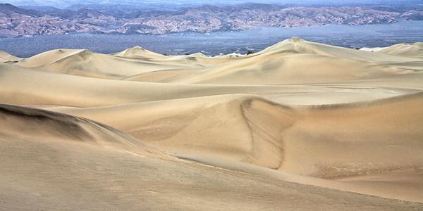 Mesquite Dunes #0310