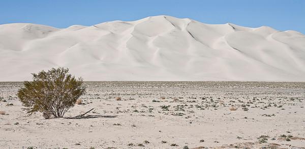 Eureka Dunes #0001