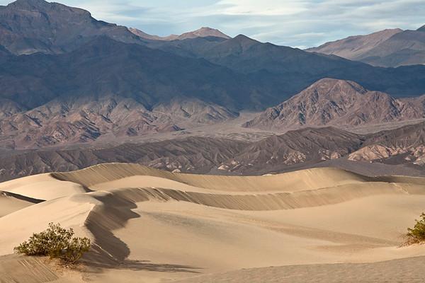 Mesquite Dunes #0326
