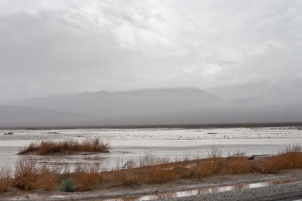 Rainy Day, Panamint Valley #0824