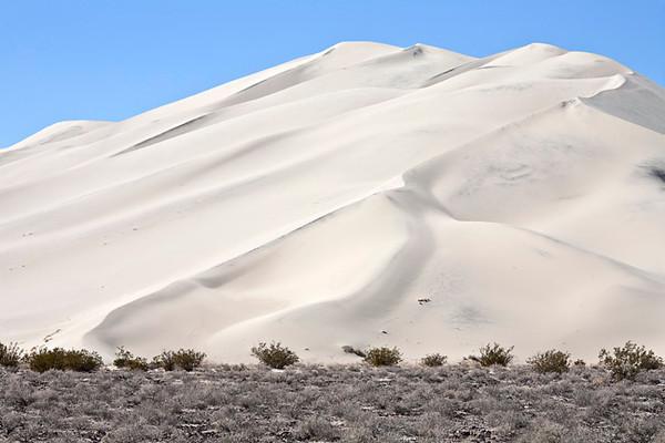 Eureka Dunes #9985