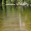 River Patterns, Merced River