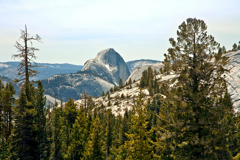Half Dome From Olmstead Point, Tioga Road