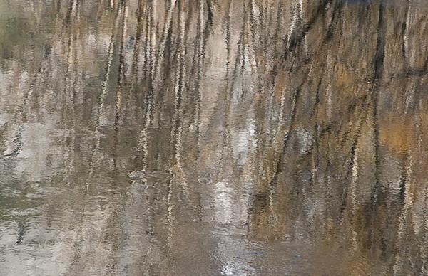 Merced River Reflections II