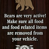 Bear Alert!