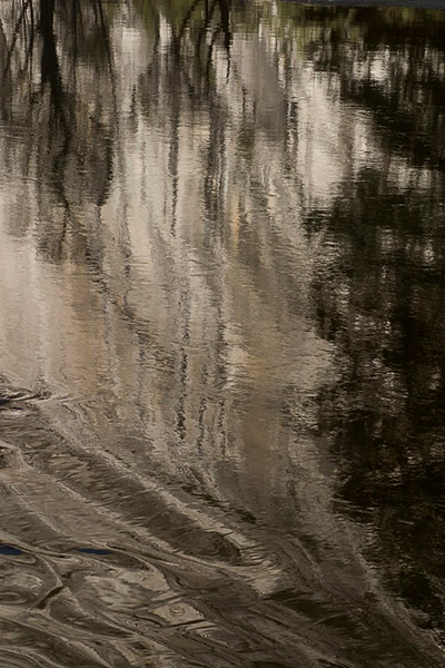 Merced River Reflections I
