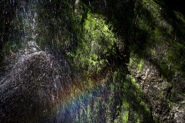 Rainbow In Water Seep