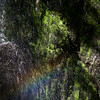 Rainbow In Water Seep