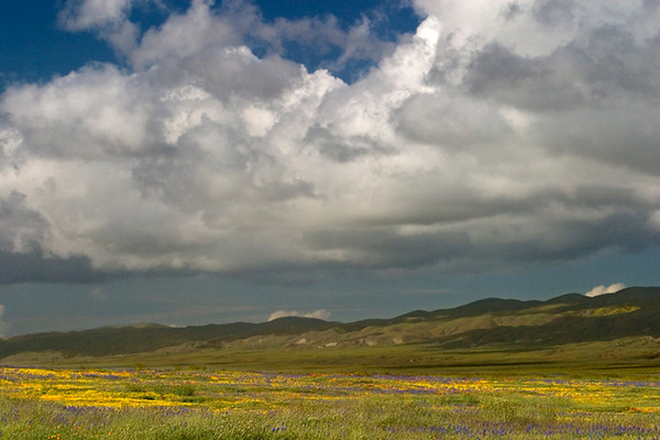 Carrizo Spring