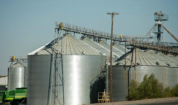 California Agribusiness #2731
