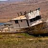 Stranded, Tomales Bay