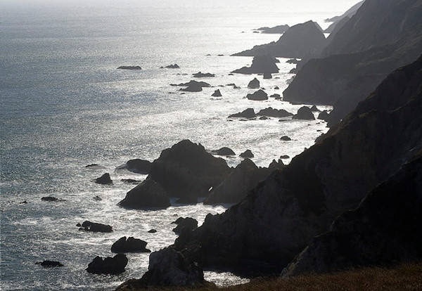 High Contrast At Point Reyes National Seashore