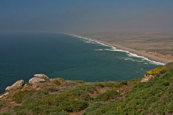 Point Reyes Seashore From Lighthouse Road