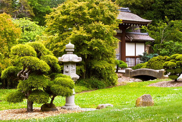 A Suggestion of Japan, Japanese Tea Garden
