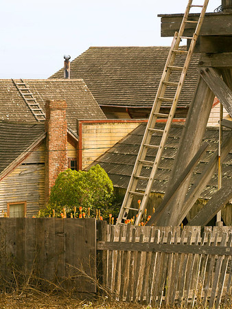 Roofs & Ladders (Stewart's Point)
