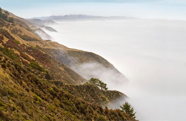 Sonoma Shoreline in Fog