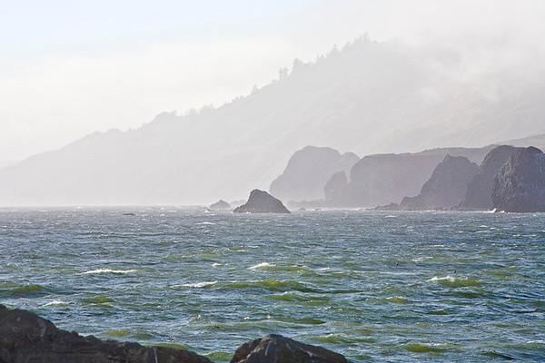Foggy Sonoma Coast , Goat Rock Beach