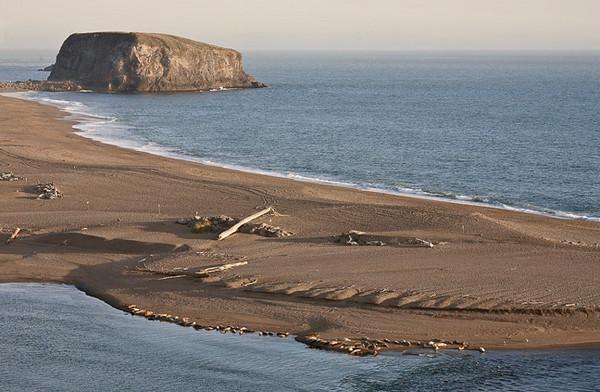 Goat Rock Sand Bar