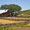 The Barn by the Vineyard