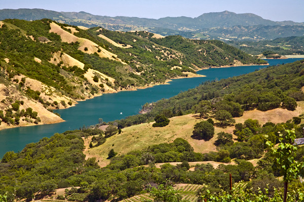 The Long View, Lake Sonoma