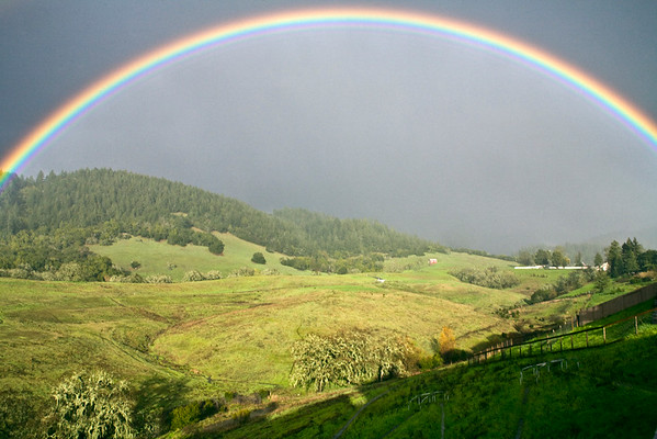 Rainbow in the Valley I