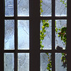 Old Glass & Vines, Winery Window