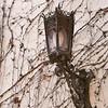 Lamp in Old Distict, Santa Barbara