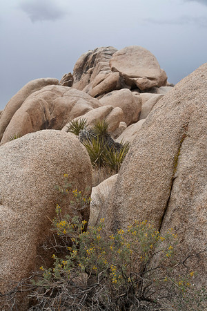Lumpy, Gritty Granite Formations